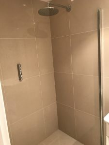 Shower screen and shower micer